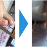 爪切りクリーニング画像02
